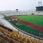 Стадион Олимпико Метрополитано