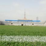 Стадион Блюмфилд Тель-Авив